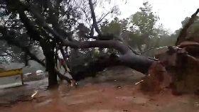 印恐怖風暴1200
