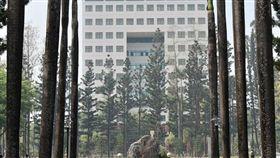 屏東,女大生,墜樓,校方(圖/翻攝國立屏東大學 National Pingtung University - NPTU臉書)