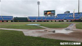 ▲桃園球場積水未退,比賽被迫取消。(圖/記者劉忠杰攝影)