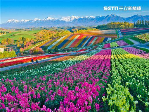易遊網,旅展,北海道,/易遊網提供