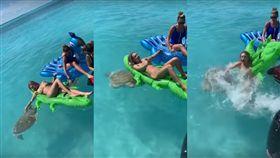 海龜,比基尼,辣妹,龜仙人,鱷魚,氣墊床,度假,色,美國, 圖/翻攝自YouTube