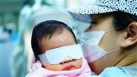 少子化,懷孕,凍卵,不孕,寶寶,分娩,孕婦(圖/記者李鴻典攝)