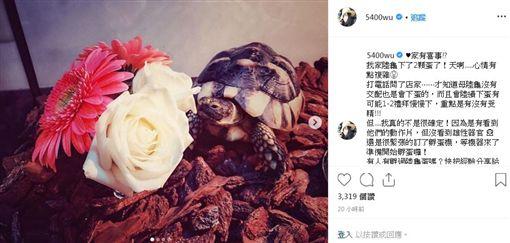 現年39歲的男星曹格,與模特兒吳速玲結婚多年,育有一子一女(圖/IG)