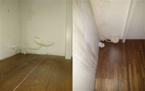 租屋,香菇,牆角,潮濕,Dcard 圖/翻攝自Dcard