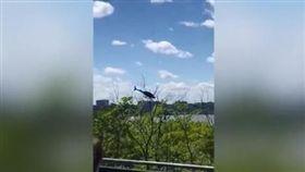 墜河,紐約,直升機(圖/翻攝自DailyMail)