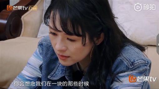 章子怡、汪峰/微博