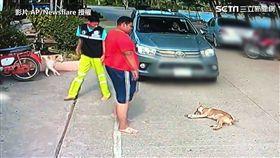 ▲身材魁武的男子出現,似乎準備出招要帶走小狗。(圖/AP/Newsflare授權)