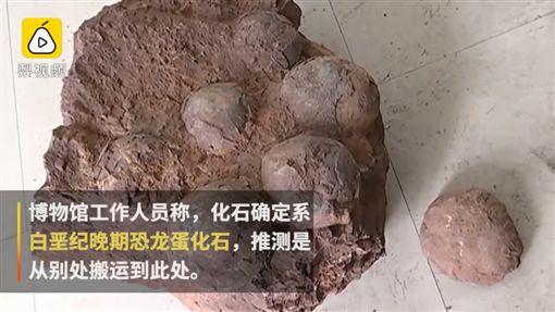 4男大生後山散步 驚見6顆恐龍蛋化石(圖/翻攝自微博)