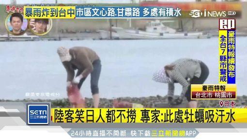 陸客誤挖 日本淨化水質用牡蠣作美食