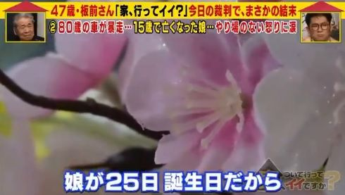 日本板前家15歲女兒聖菜遭撞死(圖/翻攝自masochist_union推特)