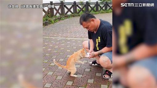 徐文良救援小橘貓。
