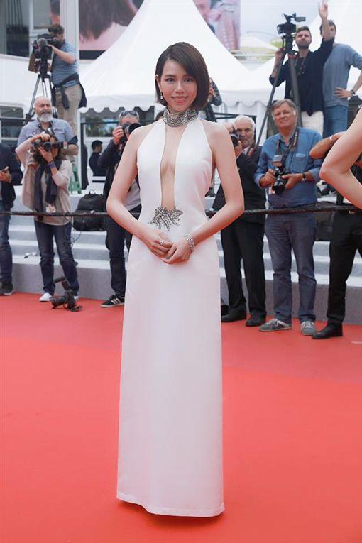 夏于喬/趙德胤/《灼人秘密/第72屆坎城影展/紅毯被法國媒體評為第7天紅毯最美。(翻攝臉書)