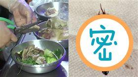 鹽水雞裡的蜈蚣鹿角菜(圖/翻攝自爆怨公社臉書)