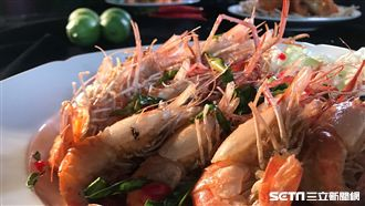世界唯一貴婦蝦 主持人吃完蝦蝦叫