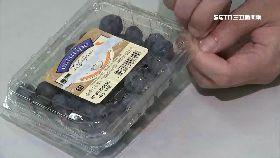 超級藍莓騙1800