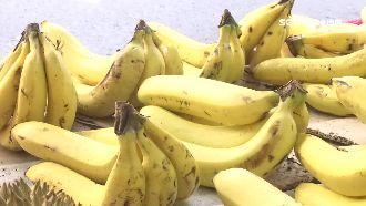 居家常備水果 香蕉吃太多會致命?