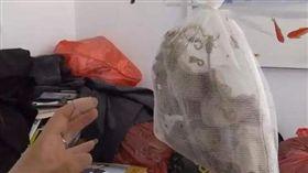 大陸山東一名時姓女子,日前收到一份「神秘包裹」,沒想到她打開伸手一摸,一根手指竟被不明生物咬傷,害她痛到跺著腳地哭。原來包裹內是一隻活蝎子,時女氣得要求快遞公司賠償,因為快遞單上面沒寫任何貨品訊息。最後快遞公司以700元人民幣(約新台幣3188元)當和解費,事件才得以落幕。(圖/翻攝自微博)