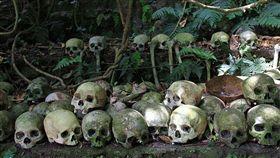 Trunyan,峇厘島,天葬村,屍體,天葬,鳥葬,親人,屍臭,神樹, 圖/翻攝自推特
