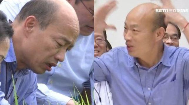 韓粉快來搶…韓國瑜討登革熱預算買禮券 網:打蚊子發大財
