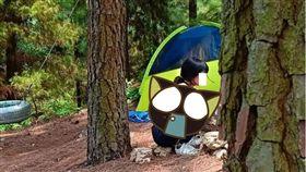 越南,露營,穿著,衣服,服裝,男子,計畫,樹林,蚊子 圖/翻攝自臉書