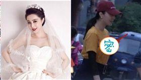 范冰冰,李晨,結婚,鑽戒