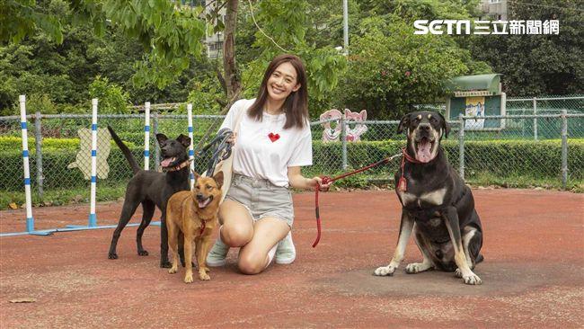 王心恬養兩隻狗 個性「比男友還乖」