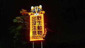 石虎LED警示牌。(圖/翻攝自苗栗縣政府官網)