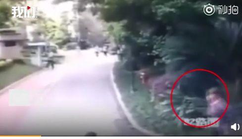 驚恐畫面曝光!他墜樓輕生砸中2路人 幼童當場被壓死(圖/翻攝自紅星視頻) ID-1953869