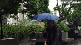 下雨,雨天,大雨  李鴻典攝/資料照