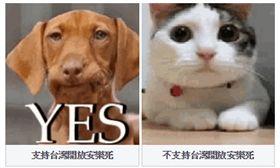 羅智強,安樂死票選,臉書