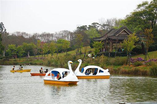 埔心牧場 端午節 DIY 夏日戲水