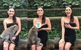 印尼,峇里島,猴子,襲胸(圖/翻攝自YouTube)