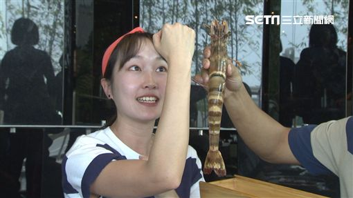 來去CHECK IN,巴鈺,郭彥均/中天提供