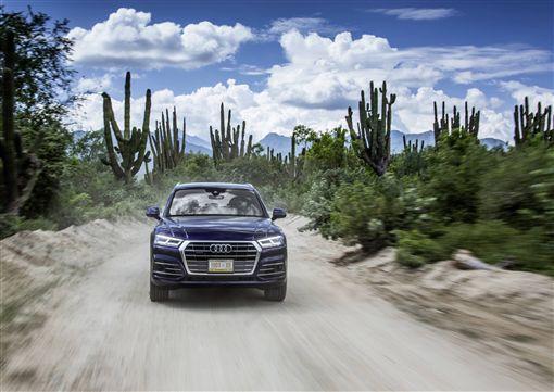 ▲2019年式Audi Q5。(圖/Audi提供)