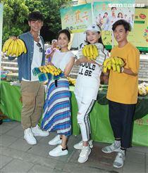 「天之蕉子」演員楊子儀、吳怡霈、張瓊姿、黃靖倫幫蕉農推廣香蕉。(記者邱榮吉/攝影)