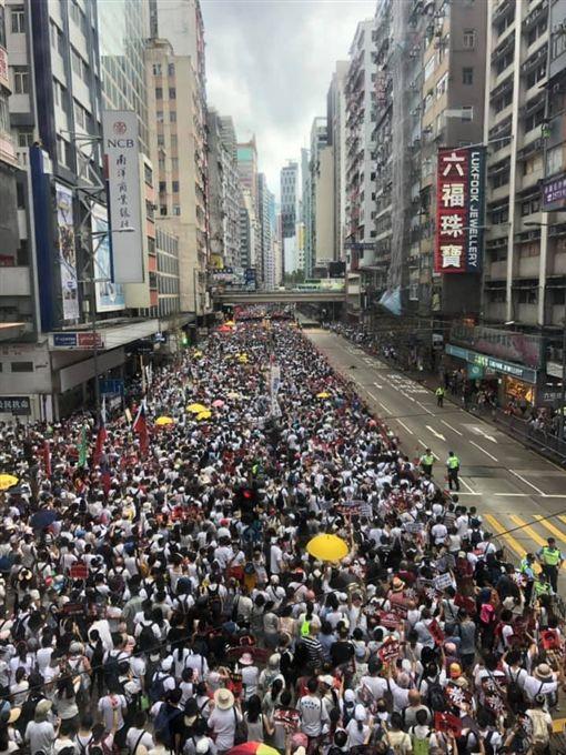香港反送中遊行。(圖/翻攝自全球集氣反送中 Global Solidarity with Hong Kong臉書)