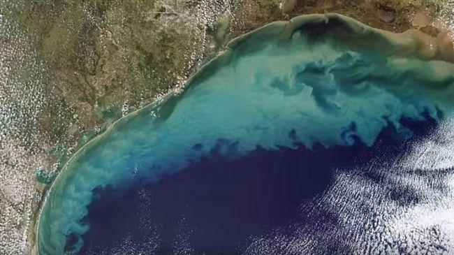 生態浩劫!墨西哥灣「死亡區」面積擴大 海底生物只能等死