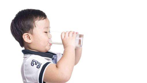 謠言,牛奶,禁藥,Line,好食課,林世航,營養師圖/好食課提供