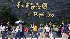 連假出遊好天氣(1)中央氣象局表示,6日各地大多為多雲到晴的天氣,台北市上午陽光露臉,民眾把握連假出遊的好天氣,前往動物園遊玩。中央社記者郭日曉攝 108年4月6日