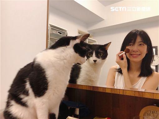 路嘉欣、愛貓「紅豆詞」圖/凱渥提供