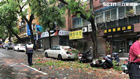台北市天母地區發生磁磚掉落事件(民眾提供)