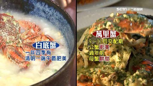 東北角呷海鮮!「白底蟹」煮粥、蒜醃鮮美