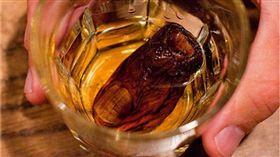 加拿大酸腳趾雞尾酒。(圖/翻攝自推特)