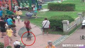 男童公園遛猴子,女童遭咬傷