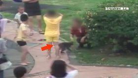 遛猴咬女童1200