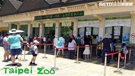 台北市立動物園,動物園,電子化收費系統,排隊,買票