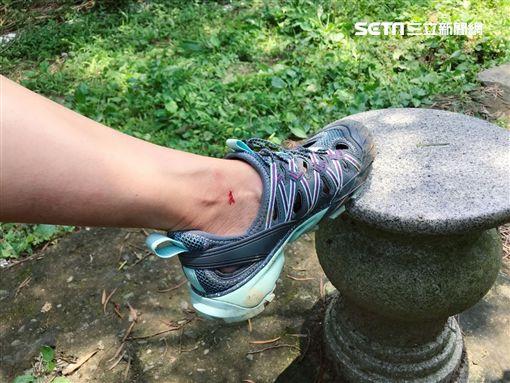 王心恬爬新山、挑戰水上SUP 圖/凱渥提供