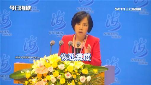 海峽論壇誑言 黃智賢:一國兩制是中國體貼