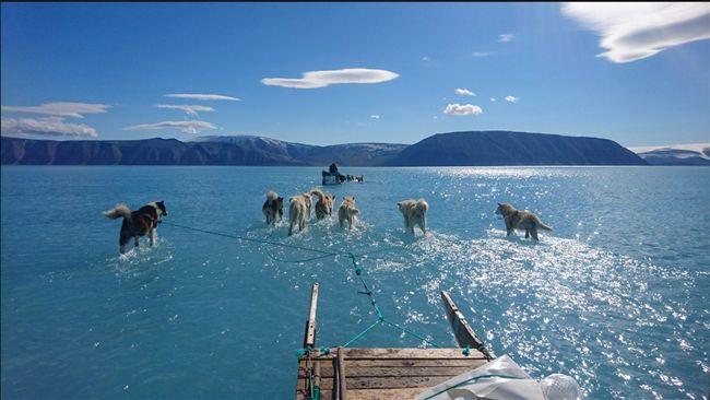 冰層提前融化…北極罕見奇景 變多熱?一張照片洩玄機