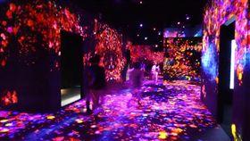 東京數位藝術博物館魅力大 一年吸客230萬人位於東京台場的森大廈數位藝術博物館開幕一週年已吸客230萬人,遊客在館內不需地圖指引,可用五感享受藝術。中央社記者楊明珠東京攝 108年6月20日